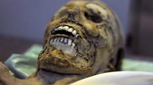 Mummy Teeth