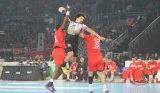Egypt: African Handball Champion