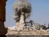 Islam, Jihad, andSyria