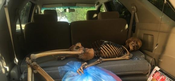 Max in Car