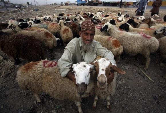 Eid and Taqiyya